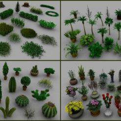 3D-Pflanzen