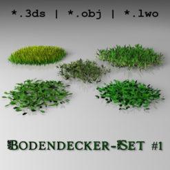 Bodendecker_1_577px