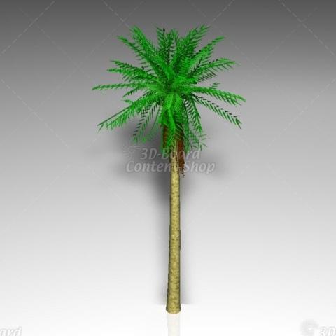 3D Plants Palme 3D Modell Pflanze